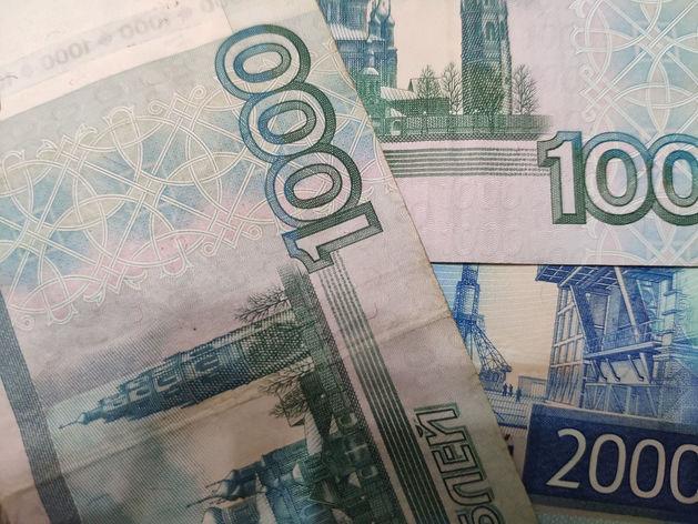 Зарплатные ожидания россиян резко сократились после пандемии