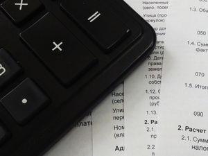Самозанятые жители региона получат дополнительный налоговый бонус