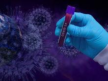 В России меньше 8 тыс. новых случаев коронавируса. Но от болезни умерло почти 500 врачей