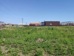 Рядом с заводом «Ликолор» продается земля под производство или склад