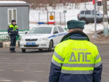 Красноярские водители стали меньше пить, быстрее ездить и уважать пешеходов