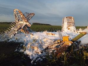 Самолет АН-2 разбился в Нижегородской области. Один человек погиб