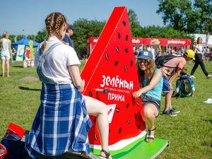 Фестиваль «Зеленый» отменили – пока до следующего лета