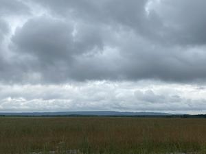 «Белое море» стало зеленым. Завершена ликвидация двух крупнейших свалок в регионе
