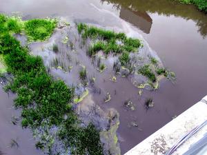 В Челябинске около конгресс-холла «Крылья» на реке встало пятно мазута