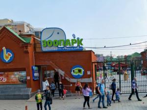 Открытие зоопарка, госпиталь «Экспо» заполнен на 75%. Главное о COVID-19 в регионе