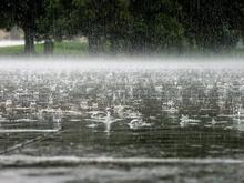 Красноярск ожидают дожди до конца июля