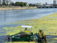 В центре Челябинска повторно чистят реку Миасс