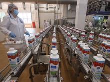 «Молочный король» Урала запустил новую производственную линию за 2,5 млрд руб.