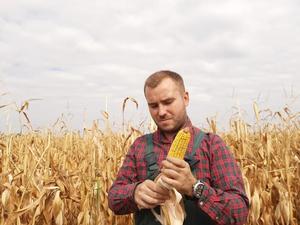 Фермеры Челябинской области просят признать рискованным земледелие в регионе