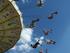 Новосибирским парковым аттракционам разрешили возобновить работу