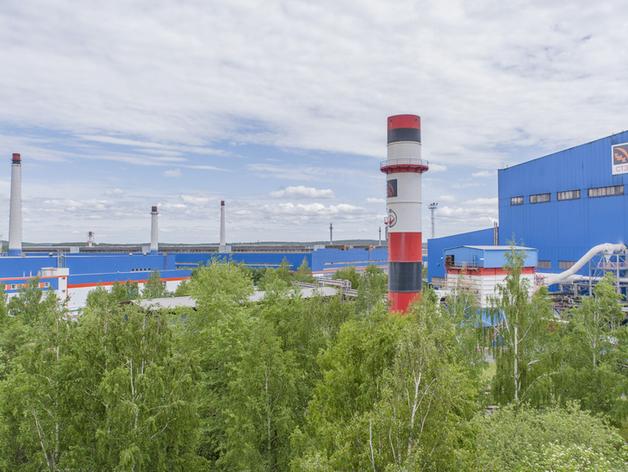 Северский трубный завод окружен зеленой зоной