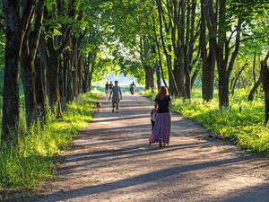 Санатории Новосибирской области — на 6 месте по доступности в Сибири