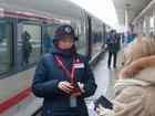 До Питера за восемь часов. Скоростной поезд «Стриж» свяжет Поволжье с Санкт-Петербургом