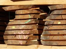 Новое деревоперерабатывающее предприятие откроют в Новосибирской области
