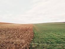 Под жилье и не только. В Нижегородской области выставлены на торги почти 70 га земель