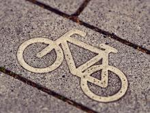 Велосипедные дорожки включат в региональную граддокументацию