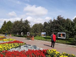 В сквере Космонавтов открылась фотовыставка «Крылатый металл»
