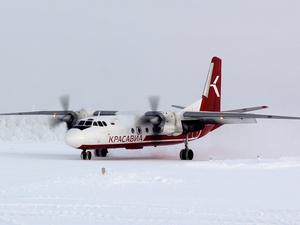 Из Красноярска открывают рейсы в Светлогорск