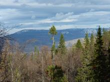 В Челябинской области утвердили запреты в национальном парке