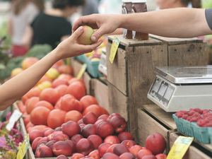 Более 150 продавцов смогут торговать на первом фермерском рынке