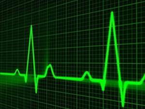Уступили пандемии. Оборот розничной торговли в Нижегородской области упал на 7% за полгода