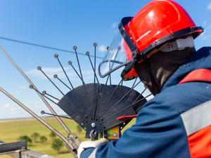 Энергетики устанавливают на электросетях устройства для защиты птиц от тока