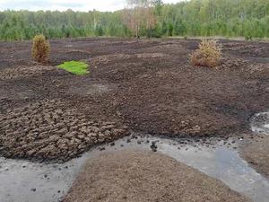 Прокуратура всерьез занялась экологическим бедствием под Среднеуральском