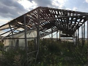 В Челябинской области владельца теплиц накажут из-за нелегальных мигрантов