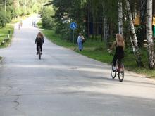 В мэрии разработали концепцию развития Заельцовского парка