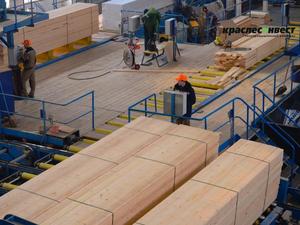 В этом году начнут проектировать лесопромышленный комплекс в Богучанском районе