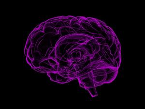 Тренируйте мозг без отрыва от дел. Пять способов легко построить новые нейронные связи