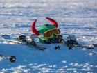 Кубок мира по фристайлу в Красноярске отменили «в интересах региона»