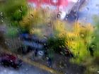 Холодная погода и дожди сменят солнечное бабье лето в Новосибирске