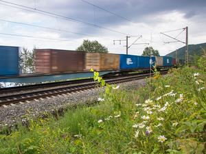 Количество ускоренных контейнерных поездов на КрасЖД выросло почти на треть