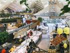 В деле УГМК. В Екатеринбурге планируют открыть три модных фермерских рынка