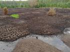 Крупный агрохолдинг в апелляции проиграл в споре об отходах