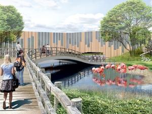 Для нового зоопарка с жирафами и фламинго в Екатеринбурге нет места. Проект откладывается