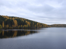 Вблизи Екатеринбурга появится новый природный парк. К развитию зовут бизнес