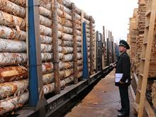В Карабуле открыли отдел таможни для оформления экспортного леса