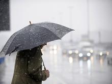 Красноярск ожидают заморозки и ледяные дожди