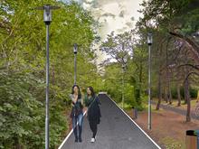 В Челябинске представили проект строительства высоток в городском бору