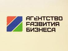 Агентство развития бизнеса выдало красноярским предпринимателям более 300 млн рублей
