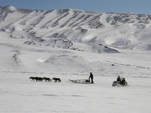 Краевые власти намерены развивать в Хатанге арктический туризм