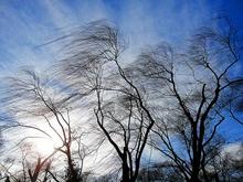 Красноярск ожидает штормового ветра