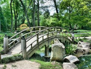 Для благоустройства Заельцовского парка в Новосибирске выбрали подрядчика