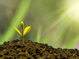 Успех состоит из маленьких шагов. Девять привычек, которые позволят наслаждаться жизнью
