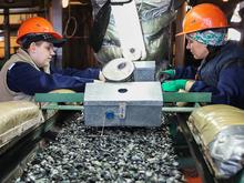 На Урале возобновили добычу изумрудов и бериллов. Впервые с момента развала СССР