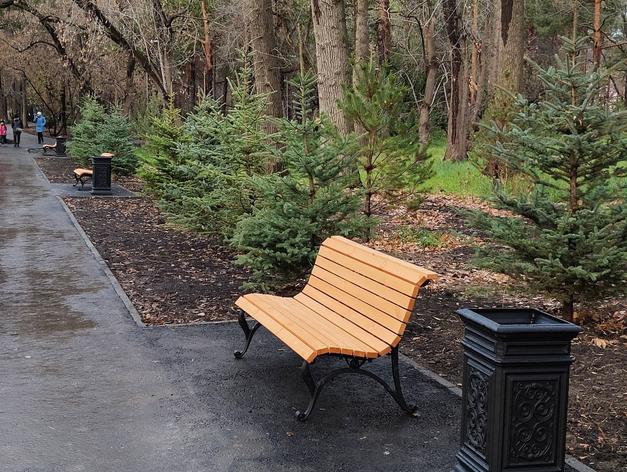 Зеленую Рощу засадили молодыми елями и поставили новые скамейки