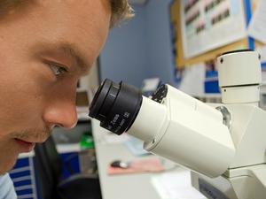 Биотехнологический научно-образовательный центр хотят создать в Новосибирске